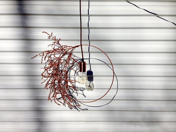 Same Tree Native Chandelier Collection. Modern design with a natural touch.