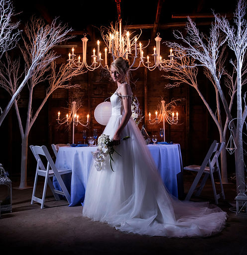 Couture Wedding Romantic Bride, Couture Ever After Wedding Design