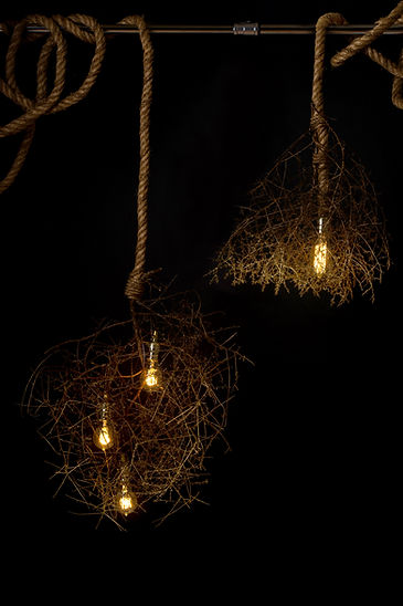 Gilded modern natural chandeliers by Same Tree. Modern designed lighting with a natural touch.