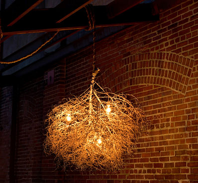 Modern designed lighting with a natural touch by Same Tree. Hand Sculpted and preserved tumbleweeds create its' frame.