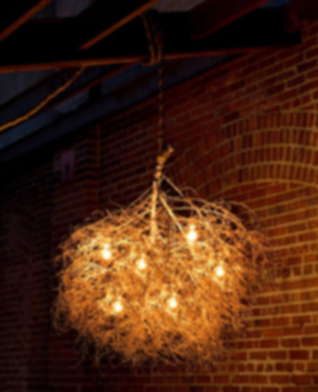 Same Tree Native Collection Chandeliers. Modern design with a natural touch. Made from sculpted and preserved tumbleweeds.