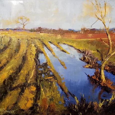 Kathie Sauer - Garvin Brown Nature Preserve