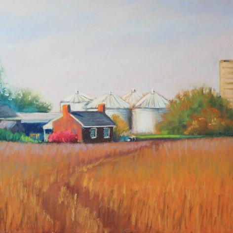 Fran Redmon - Farmland in Fall