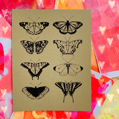 Ashley Worley - KY Butterflies