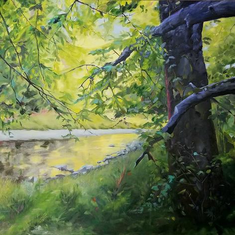 Kathie Sauer - Harrods Creek Reflections