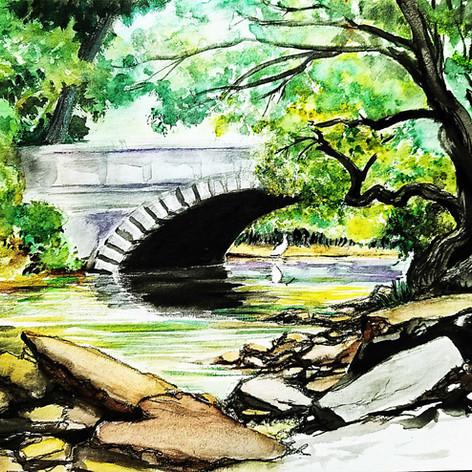 Jill Baker - Cherokee Park Bridge