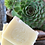 Thumbnail: Barre de shampooing à la noix de coco