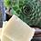 Thumbnail: Just unscented Solid Shampoo Bar N°10