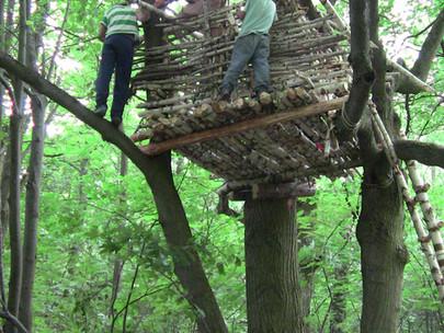 Как мы строили домик на дереве