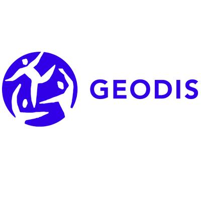 5. Geodis.png