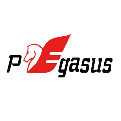 25. Pegasus.png