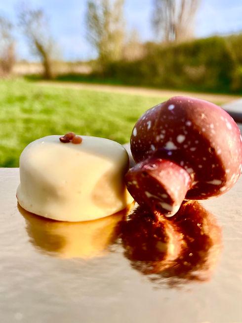 ChocoJa Wieze - chocolade herfstcollectie