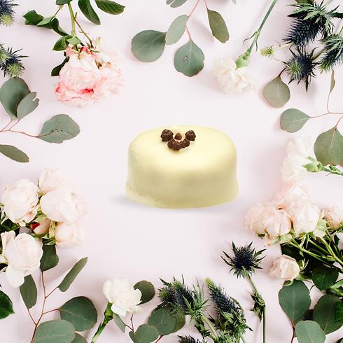 ChocoJa Wieze - weetjes over chocolade