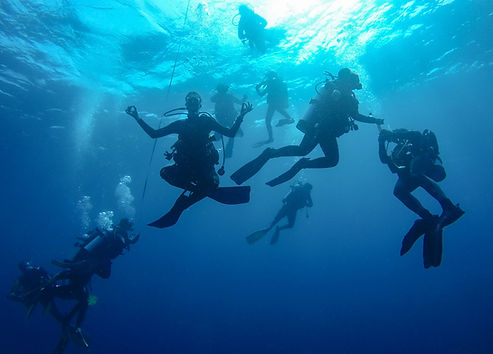 Divemaster Course is fun