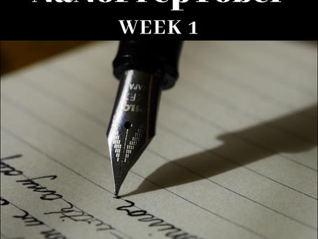 NaNoPreptober: Week 1