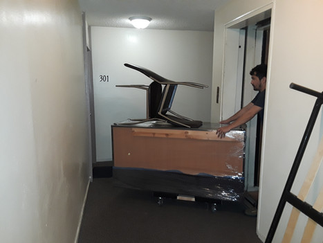 Real Moving in action