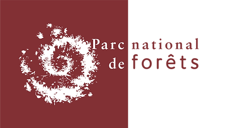 PNDForets_autoproduction (2).png