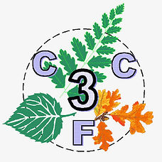CC3F_logo.jpg