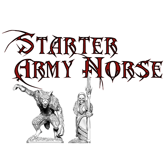 Norse Starter Army