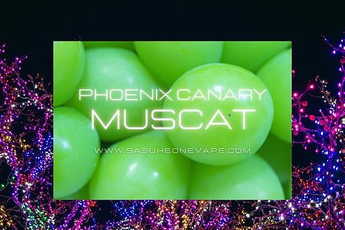 Phoenix Canary MUSCAT / 60ml