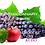 Thumbnail: Phoenix Canary Apple Grape Menthol / 60ml