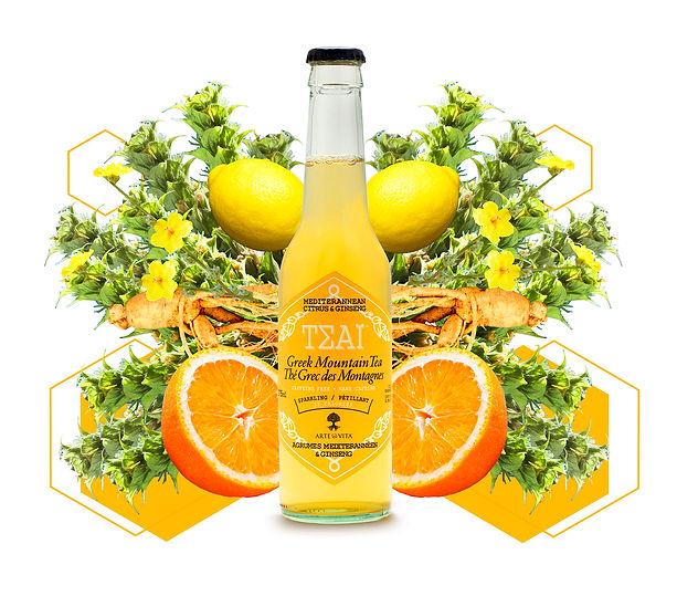 Citrus_Ingredients_Layout copy.jpg