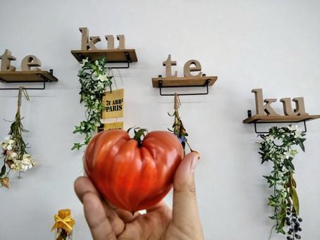 八百屋さん直伝!トマトの選び方~テクテク・workshop~