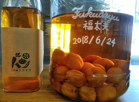 最高の梅酒~果実酒専門bar・テクテク~