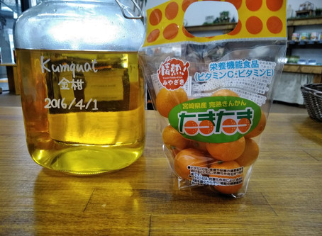 キンカンのお酒~果実酒専門bar・テクテク~