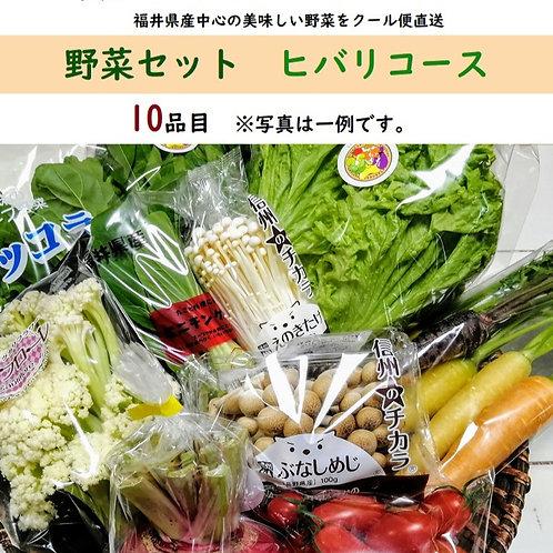 野菜セット ヒバリコース 10品目 旬 おまかせ 新鮮 直送 クール便 本州・四国は送料無料 商品説明書同封