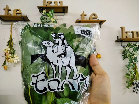 栄養価最強の王の野菜。モロヘイヤ