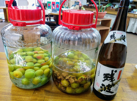 黒糖泡盛梅酒~実酒専門bar