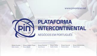 PINSLIDES AP-02.jpg