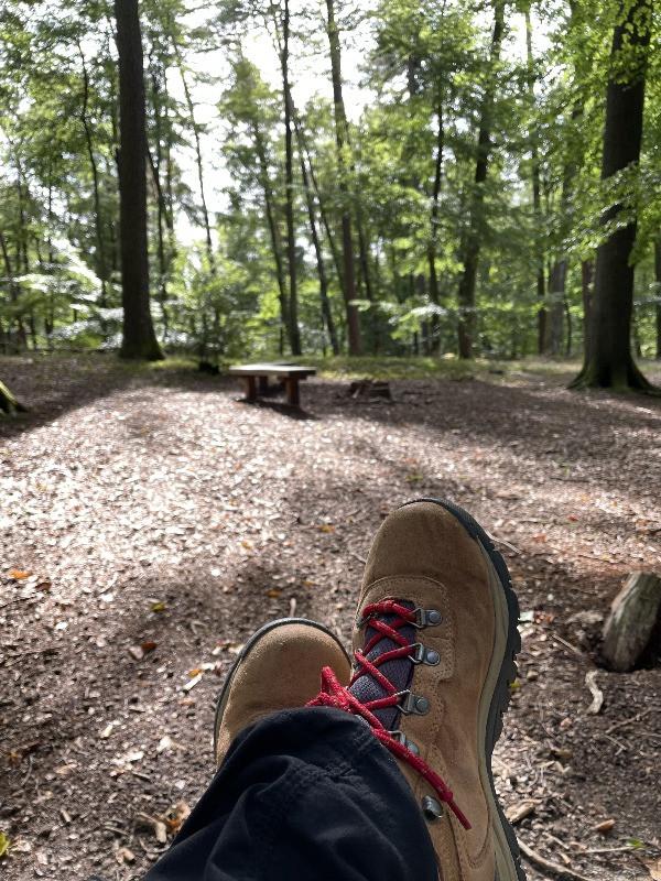 Käfer Safari Hike in Bruchmülbach-Miesau