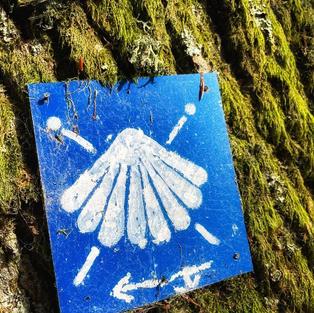 Camino de Santiago Bruchmühlbach-Miseau_edited.jpg