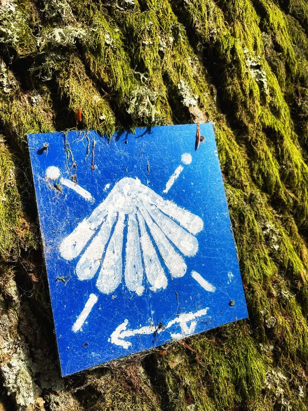 Camino de Santigo Blog #2