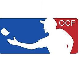 danish logo.jpg