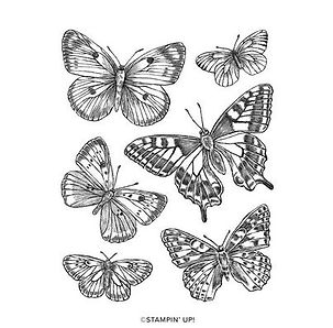 Butterfly Brilliance Cling Stamp Set.JPG