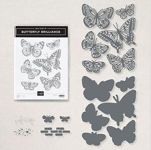 Butterfly Brilliance Bundle.JPG