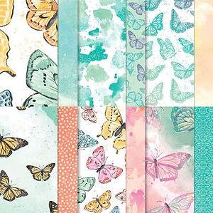 Butterfly Bijou DSP.JPG