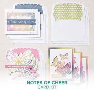 06.01.21_Notes of Cheer Card Kit.jpg