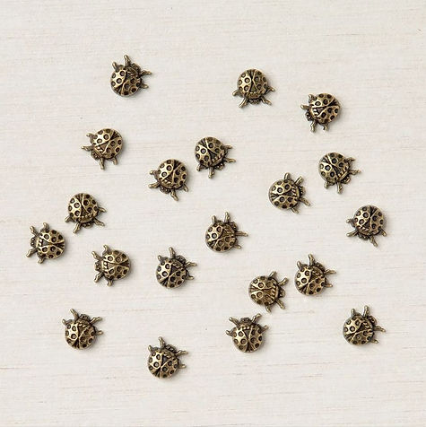 154299 Ladybug Trinkets.JPG