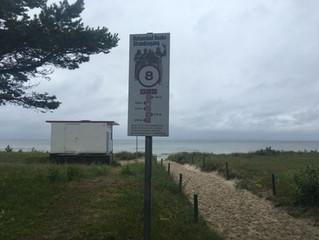 Urlaub mit Hund im Ostseebad Baabe auf der Insel Rügen- Strandaufgang 8 geht es zum Hundestrand