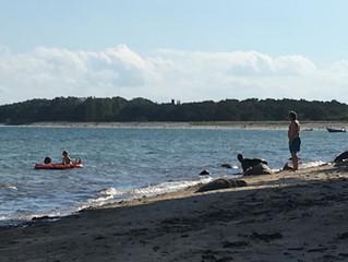 Gestern war ein wunderschöner Sommertag an der Ostsee auf Rügen im Ostseebad Göhren- die ganze Famil