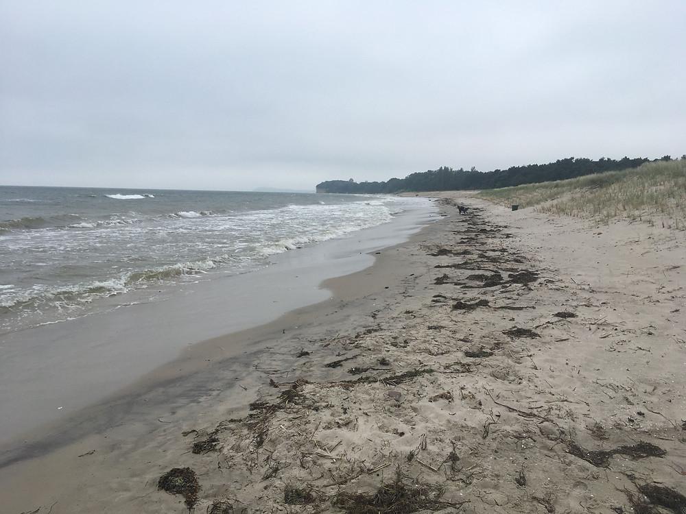 Heute am 29.06.2017 am Südstrand von Göhren, ziemlicher Wellengang und freie Bahn für mich und Rudi zum Spazierengehen!