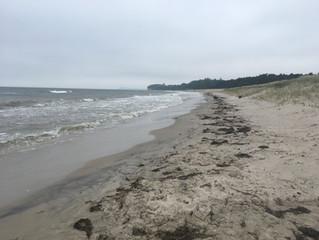 Rudi und ich beim Spazierengehen am Südstrand in Göhren, ziemlicher Wellengang, und freie Bahn!