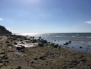 Einen Guten Morgen von der Insel Rügen aus dem Ostseebad Göhren sendet Euch Katja!