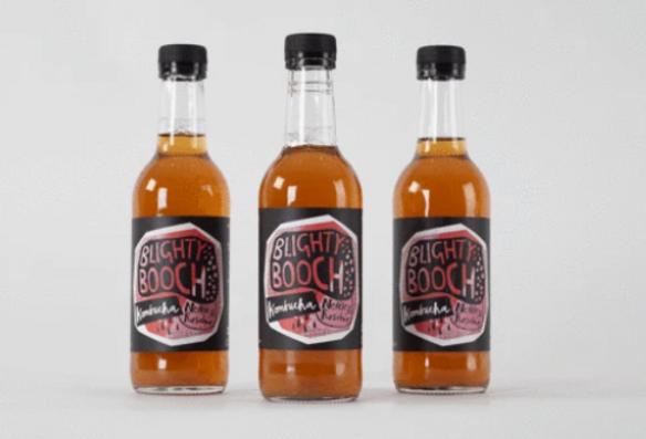 Blighty Booch Nettle and Rosehip Kombucha