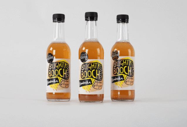Blighty Booch organic Ginger