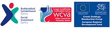 Wales council for voluntary action social business growth fund logo.png